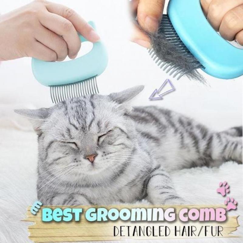 Pet Massaging Hair Removal  Shell Comb(buy 1 get 2 in total)