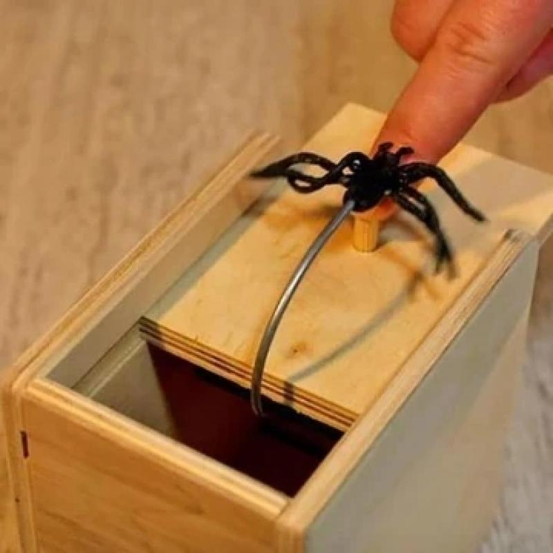 Wooden Scarebox Spider Funny Gift